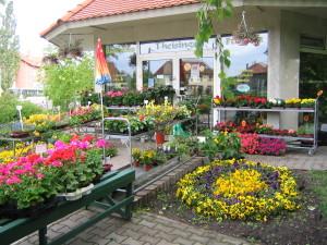 Blumen Theisinger Ladengeschäft
